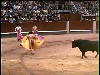 Torero